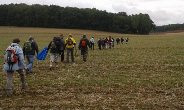 Les chemins ruraux, menacés de disparition en France