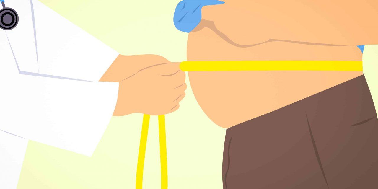 L'obésité, facteur de risques de plusieurs maladies par Colonmincil